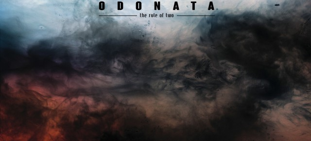 The New Shit: Odonata
